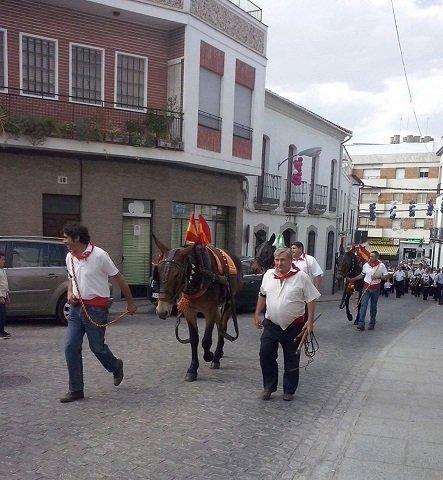 Pozoblanco-mulillas y banda de musica por calle feria- 2015