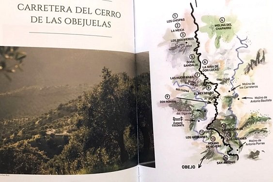 libro-cultura-del-olivar-de-sierra-en-los-pedroches-3