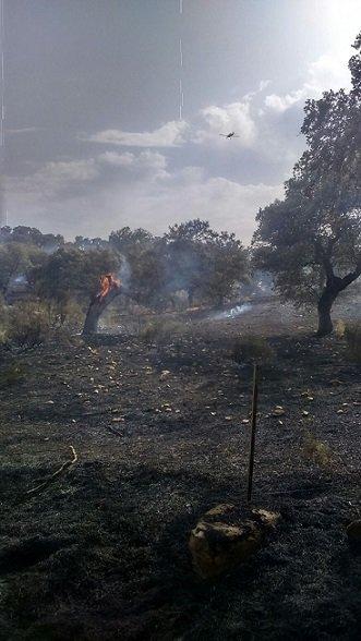 incendio-en-el-guijo-calcina-10-hectareas-2
