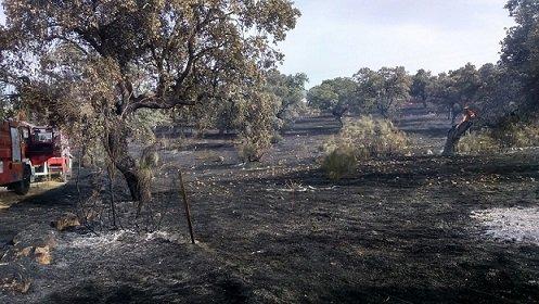 incendio-en-el-guijo-calcina-10-hectáreas
