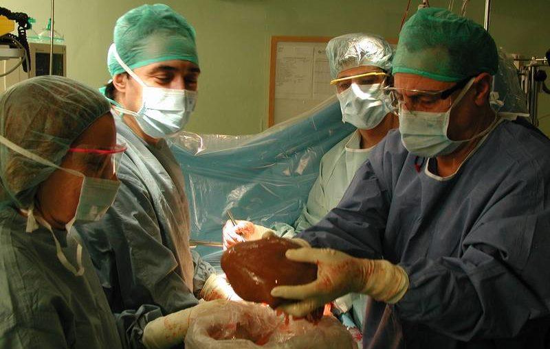 gracias-donantes-hospital-reina-sofia-realiza-14-trasplantes