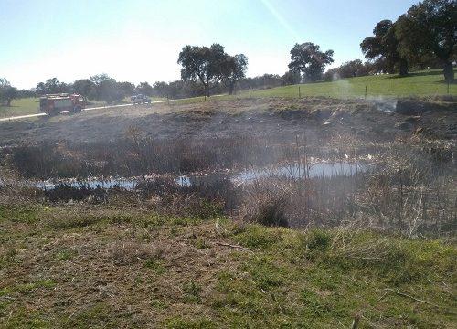 incendio-calcina-orillas-rio-guadarramilla