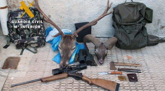 guardia-civil-sorprende-in-fraganti-cazando-ilegalmente