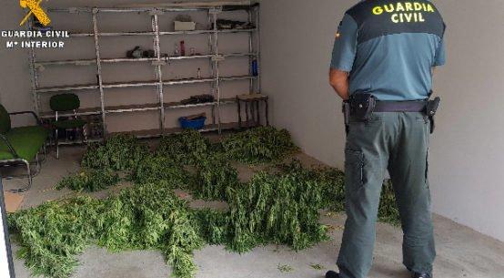 detenidos-de-marihuana-penarroya