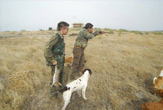 pp-pozoblanco-pleno-mocion-defensa-caza-motor-desarrollo
