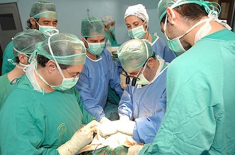 hospital-reina-sofia-75-trasplantes-de-organos