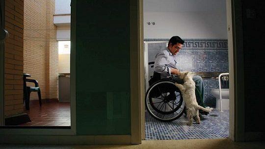 junta-de-andalucia-340-viviendas-mayores-discapacitadas