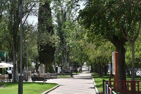 ayto-plan-regeneracion-arboleda-zonas-verdes-pozoblanco