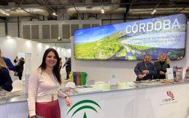 cordoba-cerro-2019-como-mejor-ano-turistico-19-millones-visitantes