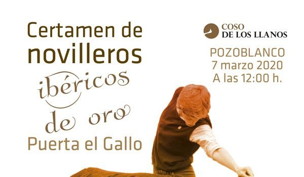 plaza-de-toros-pozoblanco-certamen-novilleros