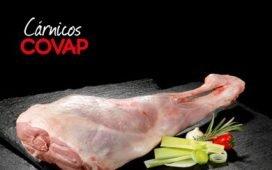 situacion-dramatica-carne-de-ovino-los-pedroches--guadiato