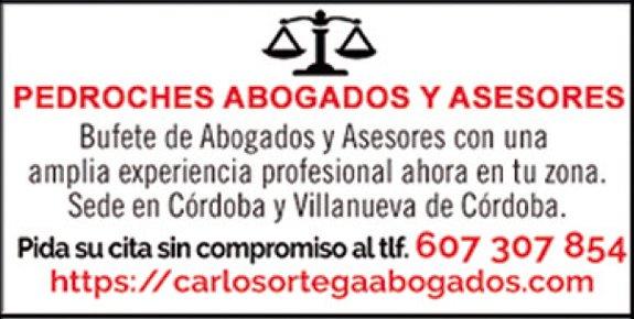pedroches-abogados-asesores