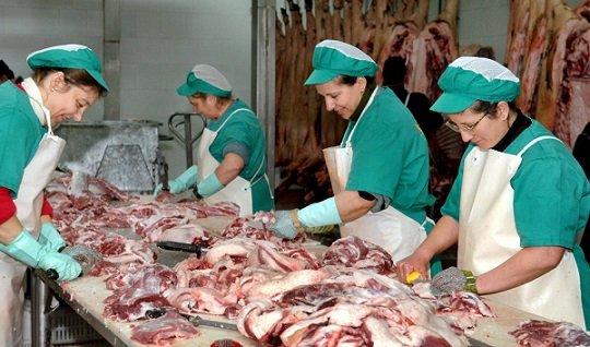 abierto-plazo-ayudas-almacenamiento-quesos-mantequilla-carnes-ovino-caprino-bovino