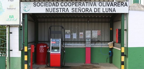 andalucia-consultivo-apostar-mecanismo-obligatorio-retirada-aceite-de-oliva