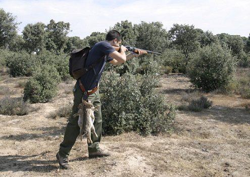 proximo-domingo-comienza-temporada-de-caza