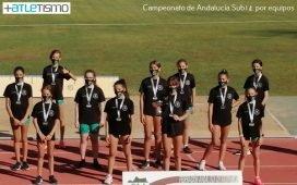 club-sierra-norte-se-proclama-subcampeon-de-andalucia-por-equipos-sub14-en-feminas