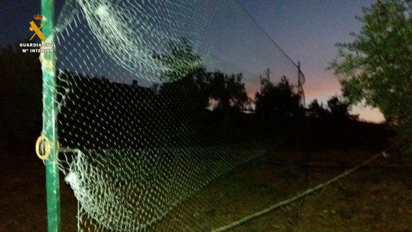 seprona-investiga-personas-y-desactiva-puntos-de-caza-ilegal-del-zorzal