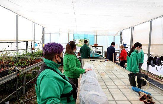 el-centro-agropecuario-entrega-40000-arboles-arbustos-municipios-provincia