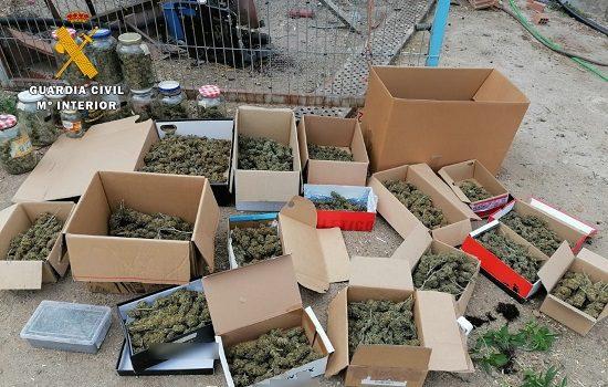 la-guardia-civil-detiene-a-un-vecino-de-dos-torres-7-kilogramos-de-marihuana